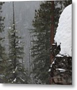 A Walk Through Winter Metal Print