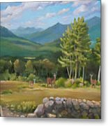 A  White Mountain View Metal Print