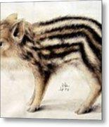 A Wild Boar Piglet Metal Print