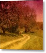 A Winding Road - Bayonet Farm Metal Print