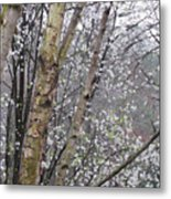 A Winter Day Metal Print
