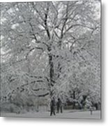 A Winter Touch Metal Print