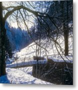 A Winter Walk In The Black Forest Metal Print