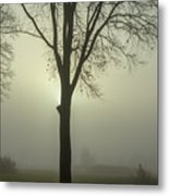 A Winter's Day In The Fog Metal Print