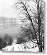 A Wintry Day Metal Print