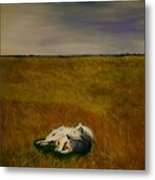 A Wolf Story Metal Print