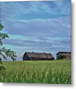 Abandoned In Grass Metal Print