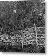 Abandoned Minorcan Country Gate Metal Print