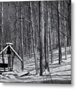Abandoned New England Sugarhouse Metal Print
