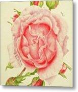 Abbi Rose Metal Print