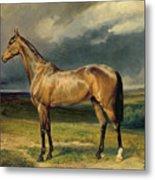 Abdul Medschid The Chestnut Arab Horse Metal Print