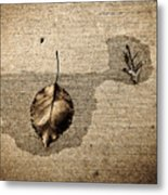 About Acquiesce Metal Print