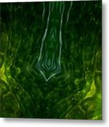 Above And Below The Surface 52  Metal Print