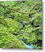 Above Moine Creek Metal Print