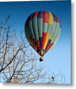 Above The Tree Tops Metal Print