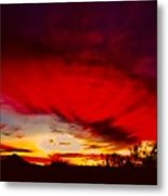 Absorbtion Metal Print