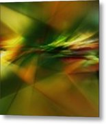 Abstract 060210 Metal Print