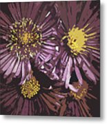 Abstract Aster Flowers Metal Print