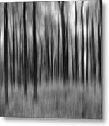 Abstract Autumn Bw Metal Print