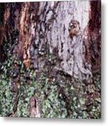 Abstract Bark 11 Metal Print