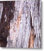 Abstract Bark 8 Metal Print