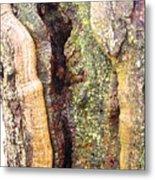 Abstract Bark Metal Print