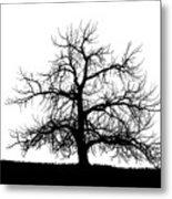Abstract Bw Single Tree Metal Print