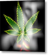 Abstract Cannabis Background Metal Print