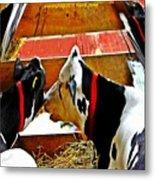 Abstract Cows Metal Print