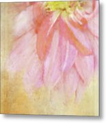 Abstract Dahlia In Pink Metal Print