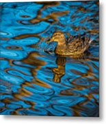 Abstract Duck Metal Print