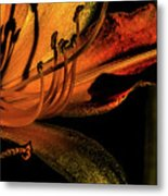 Abstract Flower Golden Red Metal Print