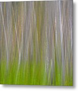 Abstract Forest 2 Metal Print