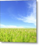 Abstract Green Field And Blue Sky Metal Print