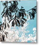Abstract Locust Metal Print