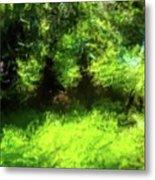 Abstract Nature 834 Metal Print