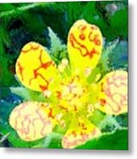 Abstract Of A Wild Buttercup Flower Metal Print