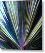 Abstract Palm Leaf Metal Print
