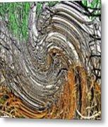 Abstract Reeds Metal Print