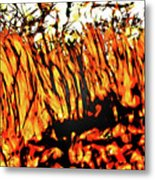 Abstract Saw Grass Iv Metal Print