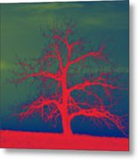 Abstract Single Tree Red-blue-green Metal Print