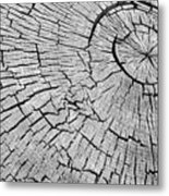 Abstract Tree Cut Metal Print