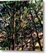 Abstract Trees 691 Metal Print