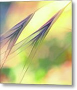 Abstract Weeds Yellow Metal Print