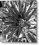Abstract Wildflower 10 Metal Print