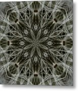 Abstract Wildflower 11 Metal Print