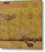 Abstract With White Tailed Deer Metal Print