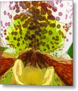 Abstracted Orchid Metal Print