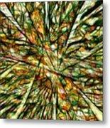 Abstraction 3099 Metal Print
