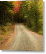 Acadia Backroads Metal Print